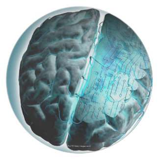 Circuit Board Brain 2 Plate