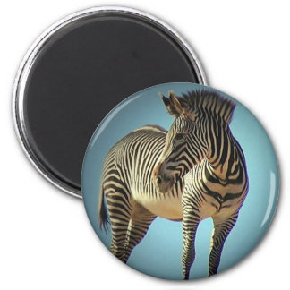 Circular Zebra Magnet