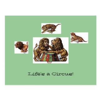 Circus Animal Postcards