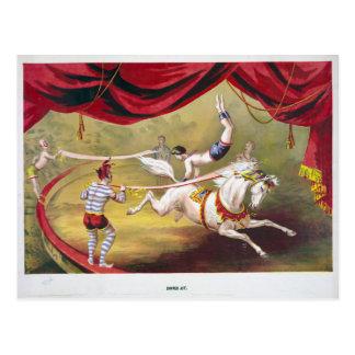 Circus Banner Act Vintage Illustration Postcard