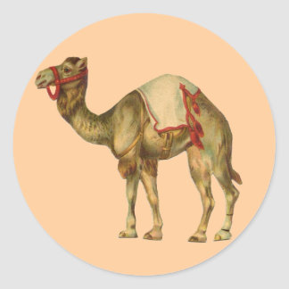 Circus Camel Sticker