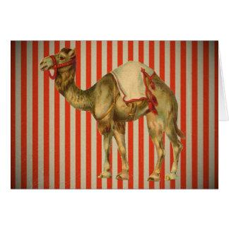 CIRCUS CAMEL VINTAGE CARD