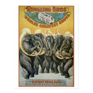 Circus Elephants Brass Band Postcard