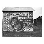 Circus in Tennessee, 1930s Post Card