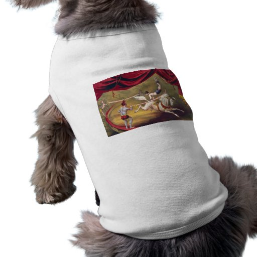 Circus poster showing acrobat performing on horse pet clothes
