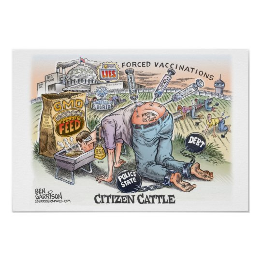 "Citizen Cattle 19"" x 13"",  Poster Semi gloss"