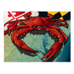 Citizen Crab of Maryland Postcard