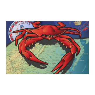 Citizen Crab of Virginia Stretched Canvas Prints