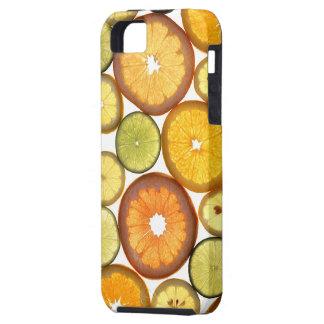 Citrus Fruit Slices iPhone 5 Cases