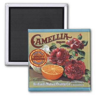 Citrus Label Square Magnet