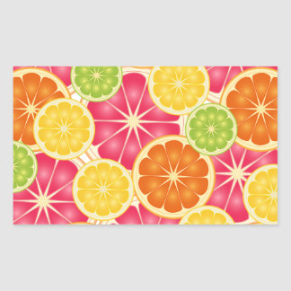 Citrus Rectangular Sticker