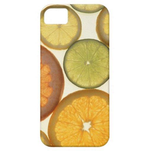 Citrus Slices iPhone 5 Covers