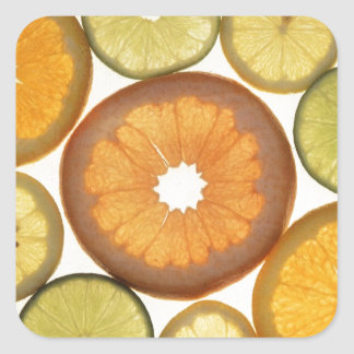 citrus square sticker