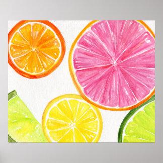 Citrus Watercolor Painting, Lime, Lemon, Orange Poster