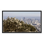 City Behind the Bushes Business Card