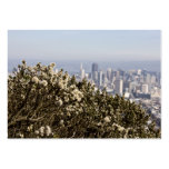 City Behind the Bushes Pack Of Chubby Business Cards