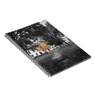 City Fall Colors Notebook