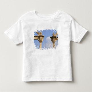 City Palace, Udaipur, Rajasthan, India 2 Toddler T-Shirt