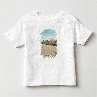 City walls toddler T-Shirt