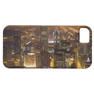 Cityscape of downtown Chicago iPhone 5 Cases
