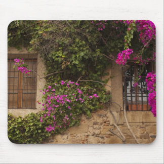 Ciudad Monumental, flower-covered buildings 2 Mouse Pad