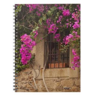 Ciudad Monumental, flower-covered buildings Notebooks