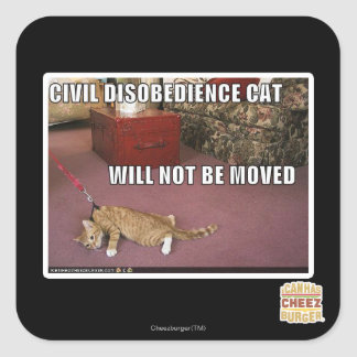 Civil Disobedience Cat Square Sticker