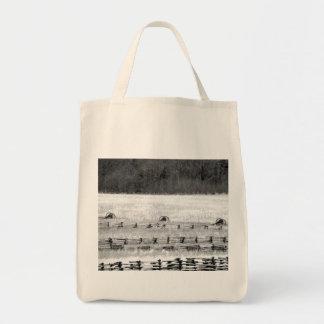 Civil War Cannons Photograph Bags