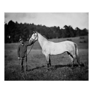 Civil War Horse, 1860s Poster