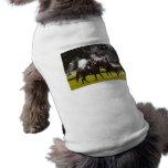 Civil War Reenactment Pet Shirt