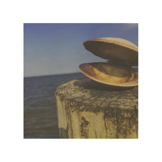 Clam by the Sea Wood Wall Decor