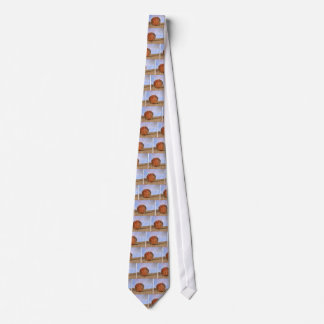 Clam shell tie