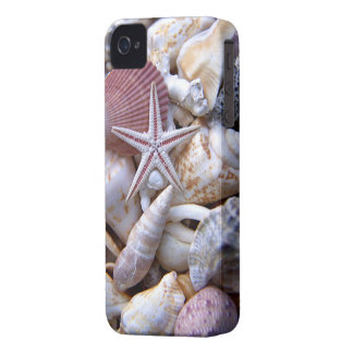Clam Shells iPhone 4/4S Case-Mate Barely There iPhone 4 Case-Mate Case