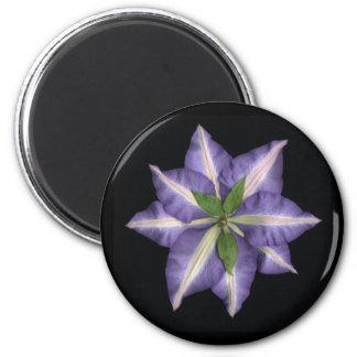 Clamatis 2 6 cm round magnet