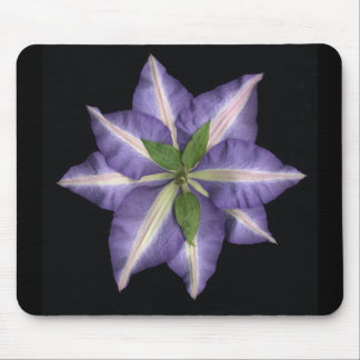 Clamatis 2 mouse pad