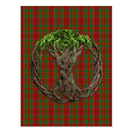Clan Munro Tartan And Celtic Tree Of Life Postcards