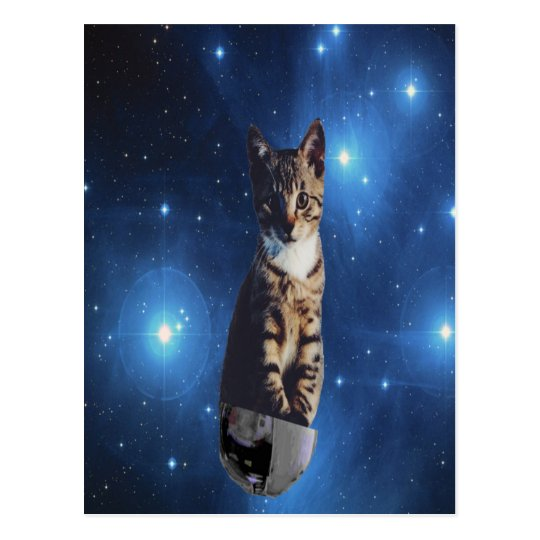 Clancy the Space Cat Postcard