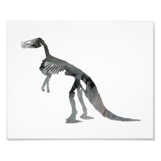 claosaurus skeleton photo print