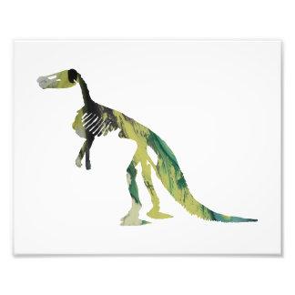 claosaurus skeleton photographic print