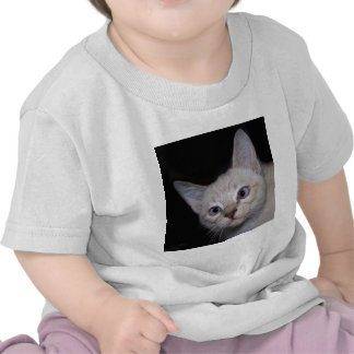 Clarence the crosseyed cat tshirts