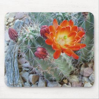 Claret Cup Cactus Flower Mousepad