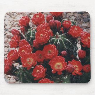 claret cup cactus mouse mat