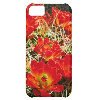 Claret Cup Cactus Wildflowers iPhone 5C Case