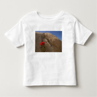 Claret cup or Mojave mound cactus in bloom Tee Shirt