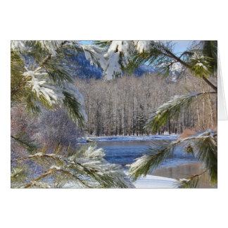 Clark Fork River Greeting Card