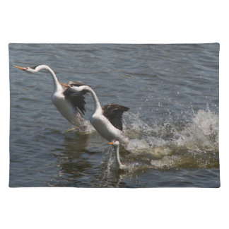 Clarks Grebe Birds Wildlife Photography Placemat