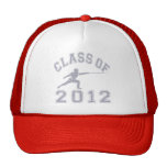 Class Of 2012 Fencing - Grey 2
