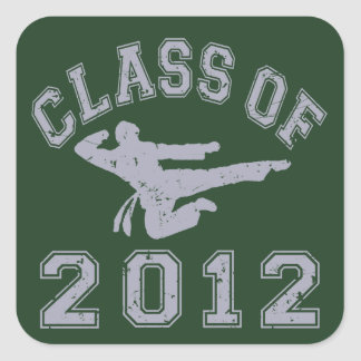 Class Of 2012 Martial Art - Grey 2 Stickers