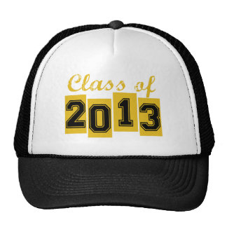 Class of 2013 mesh hat