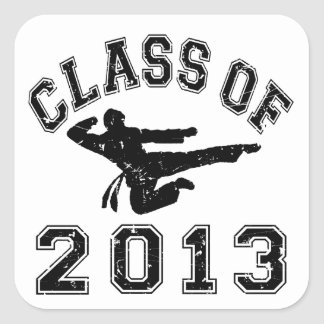 Class Of 2013 Martial Art - Black 2 Stickers